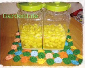 酵素ジュース作り教室