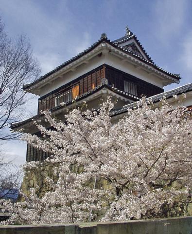 「上田城と桜」春になれば、約1000本もの桜が咲き誇る上田城。2度の大軍を退けた勇姿をたたえるかのような美しさです。また、4月8日(水)~19日(日)は「上田城千本桜まつり」が開催されます長野県上田市二の丸☎0268(23)5408上田市観光課