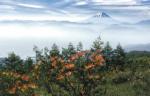 和歌山風景写真同好会写真展