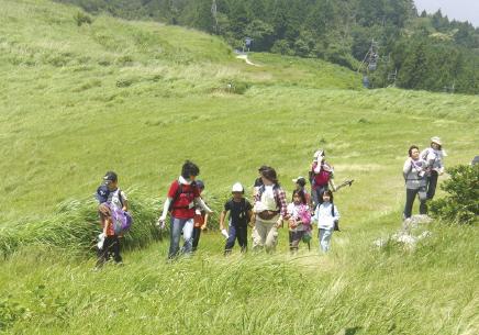 ススキが一面に広がる生石高原で自然観察