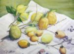和歌山市民大学水彩画教室OBグループ展