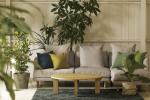 観葉植物と小物でナチュラル空間 色の濃淡でワンランク上のコーディネートを