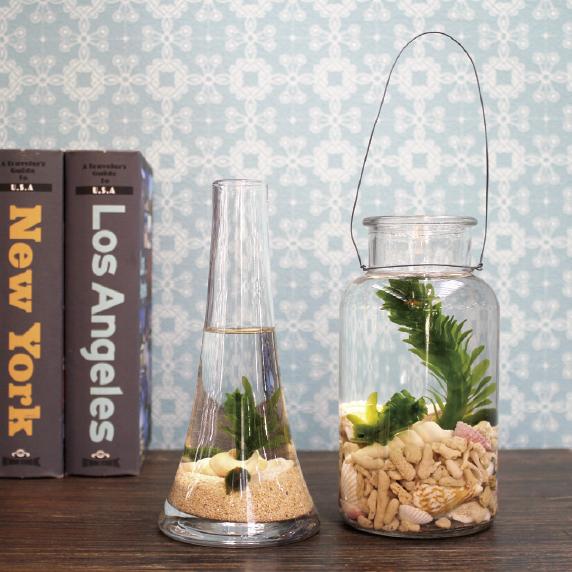 ガラスの器を水槽に見立て、水草や砂、流木などを入れ、美しい水景を作り出す「グラスアクアリウム」。ガラス花器やボトルなど、お気に入りの器を使って手軽に始められるのが魅力です。シンプルなものから凝ったものまで、楽しみ方はたくさん。自分だけのアクアリウムの世界を楽しんで。