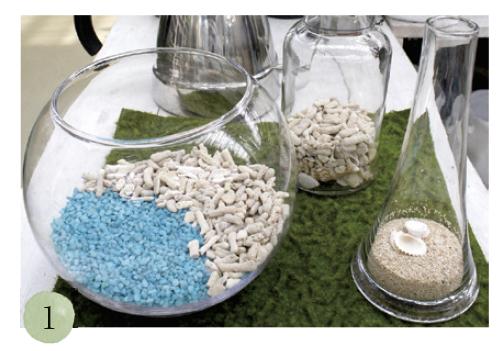 塩抜きしたサンゴとサンゴ砂、貝殻、カラーサンド、お好みの水草を用意。スプーンを使って、少しずつガラスの器の中に入れていきます