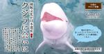 捕鯨文化が日本遺産 クジラに会いに