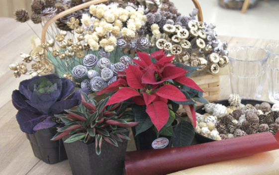 親子で楽しむガーデニング・ライフ ~冬編~ クリスマスとお正月を華やかに! 木の実を使ったクラフトで手軽に演出
