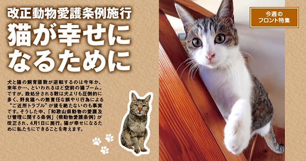 改正動物愛護条例施行 猫が幸せになるために