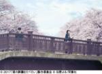 君の膵臓をたべたい 7月28日(金)ロードショー ■ジストシネマ和歌山 ■イオンシネマ和歌山