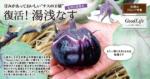 """甘みがあっておいしい""""ナスの王様"""" 復活!紀州伝統野菜 湯浅なす"""