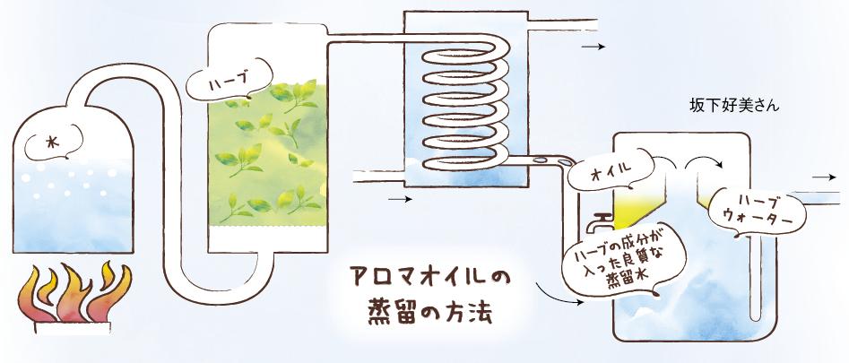 アロマオイルの蒸留の方法