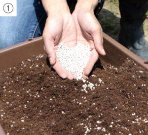 市販の土に肥料を混ぜます