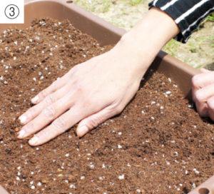 土を平らに整えます