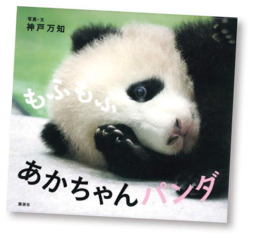 今月の1冊えほん 「もふもふ あかちゃんパンダ」