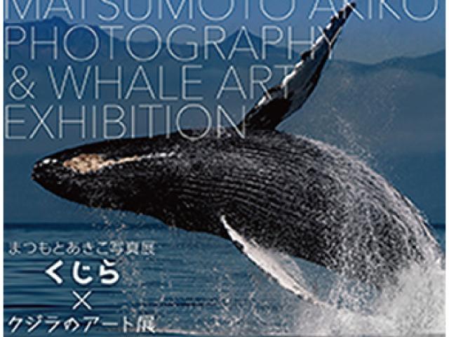 まつもとあきこ×クジラのアート展