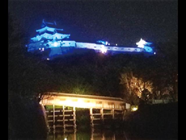 和歌山城ブルーライトアップ