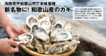 海南市や和歌山市で本格養殖 新名物に! 和歌山産のカキ