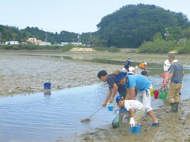 干潟の生物観察会